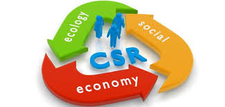 CAPACITY BUILDING PROGRAM CORPORATE SOCIAL RESPONSIBILITY (CSR)  DAN COMMUNITY DEVELOPMENT